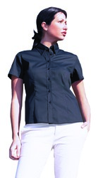 photo of Ladies Pinpoint Oxford Half Sleeve Shir... - UC704